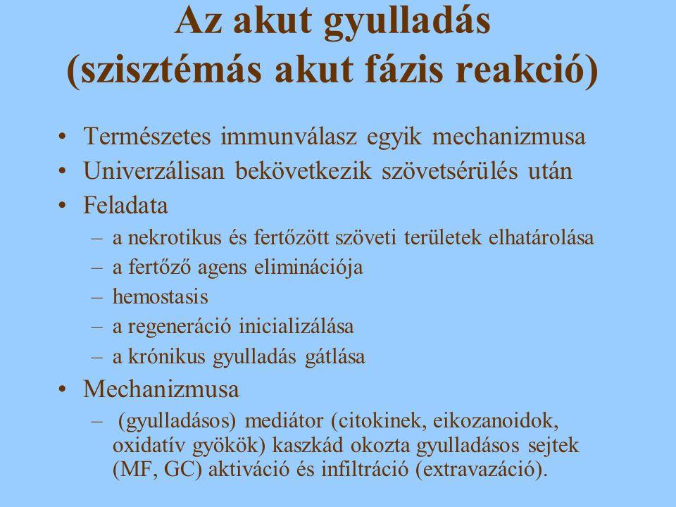 Az akut gyulladás (szisztémás akut fázis reakció)