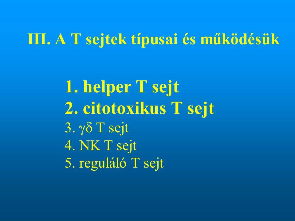 III. A T sejtek típusai és működésük