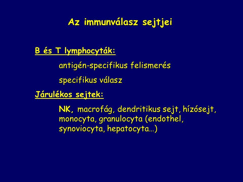 Az immunválasz sejtjei