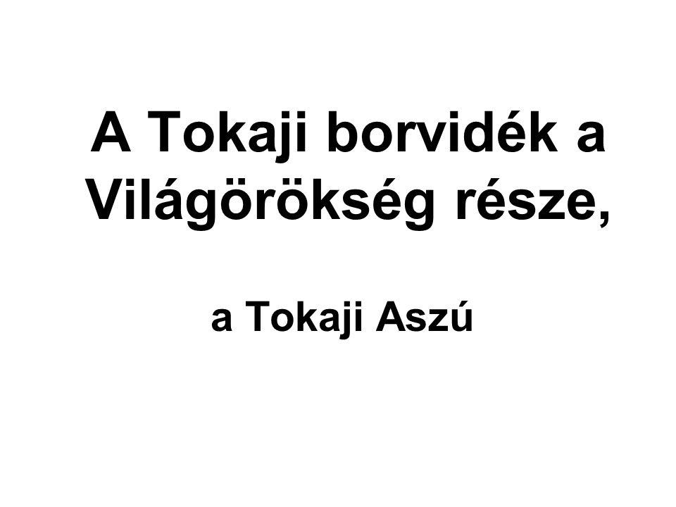 A Tokaji borvidék a Világörökség része,