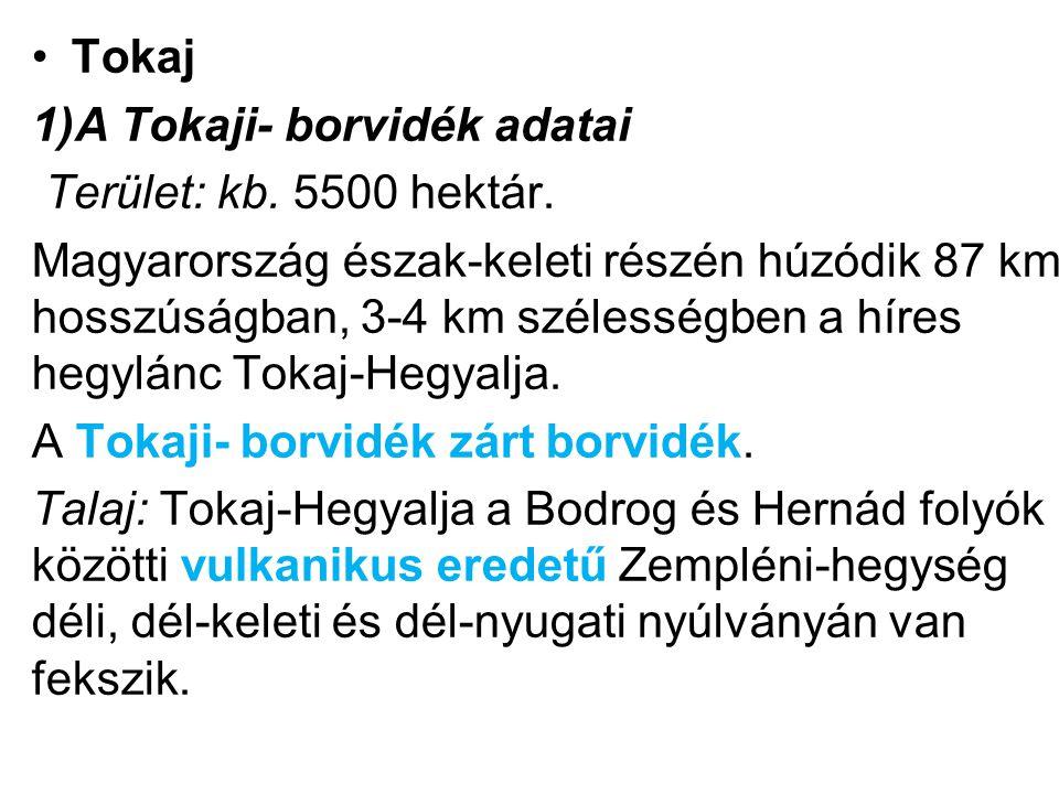 Tokaj 1)A Tokaji- borvidék adatai. Terület: kb. 5500 hektár.