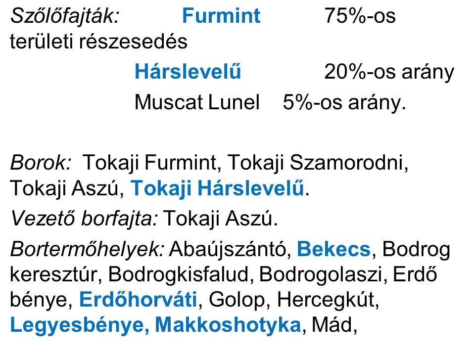 Szőlőfajták: Furmint 75%-os területi részesedés