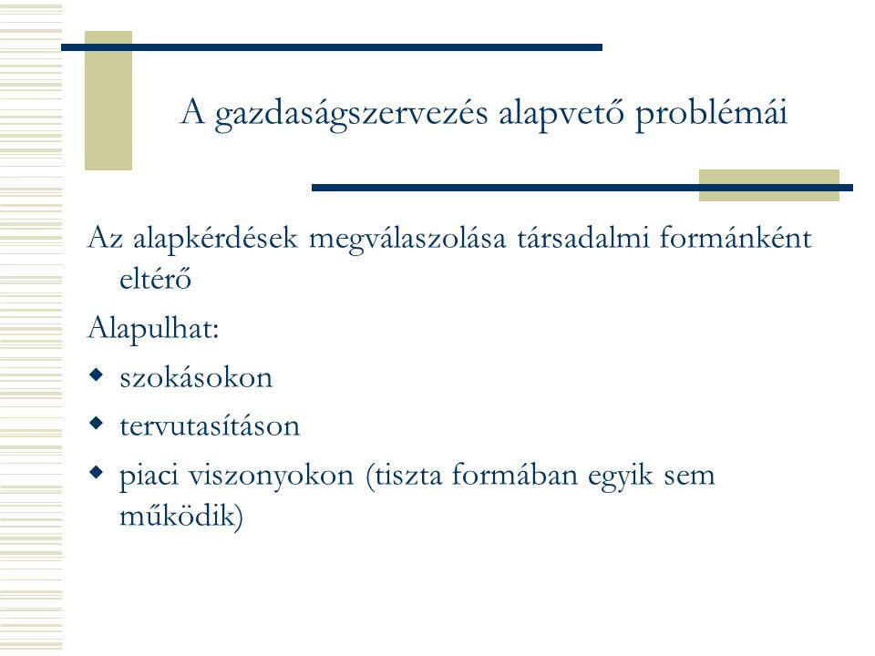 A gazdaságszervezés alapvető problémái