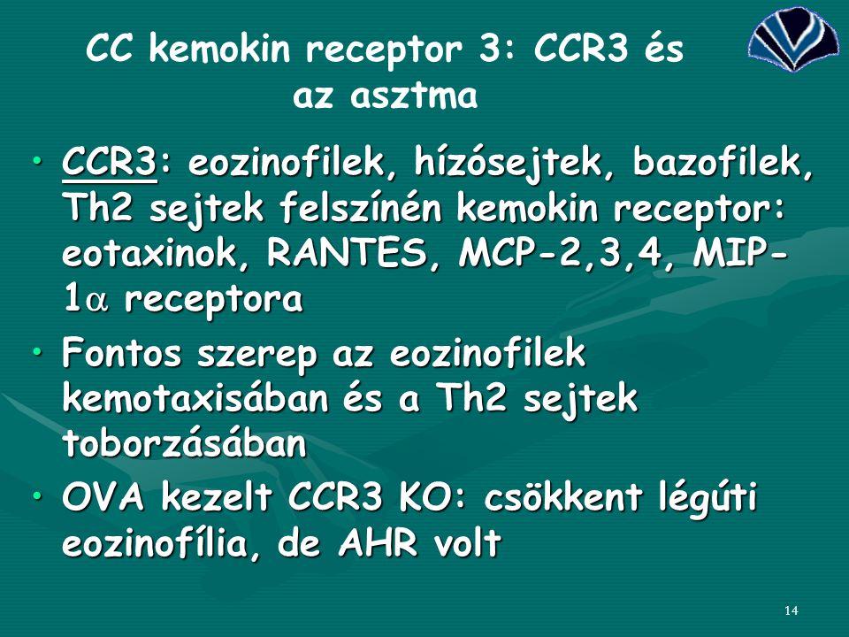 CC kemokin receptor 3: CCR3 és az asztma