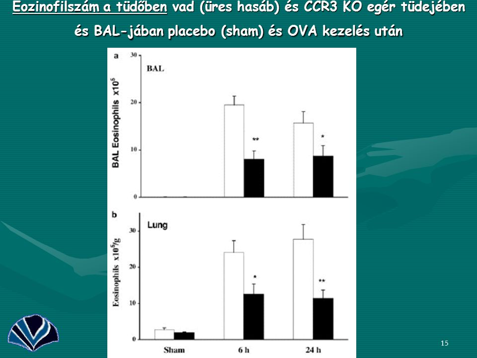 Eozinofilszám a tüdőben vad (üres hasáb) és CCR3 KO egér tüdejében és BAL-jában placebo (sham) és OVA kezelés után