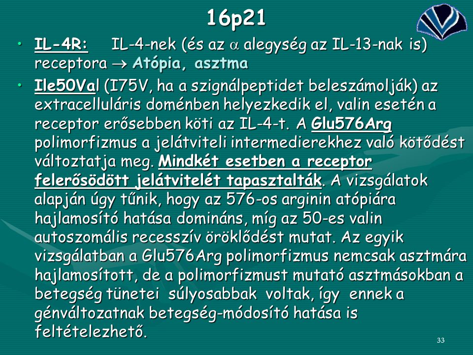16p21 IL-4R: IL-4-nek (és az a alegység az IL-13-nak is) receptora  Atópia, asztma.