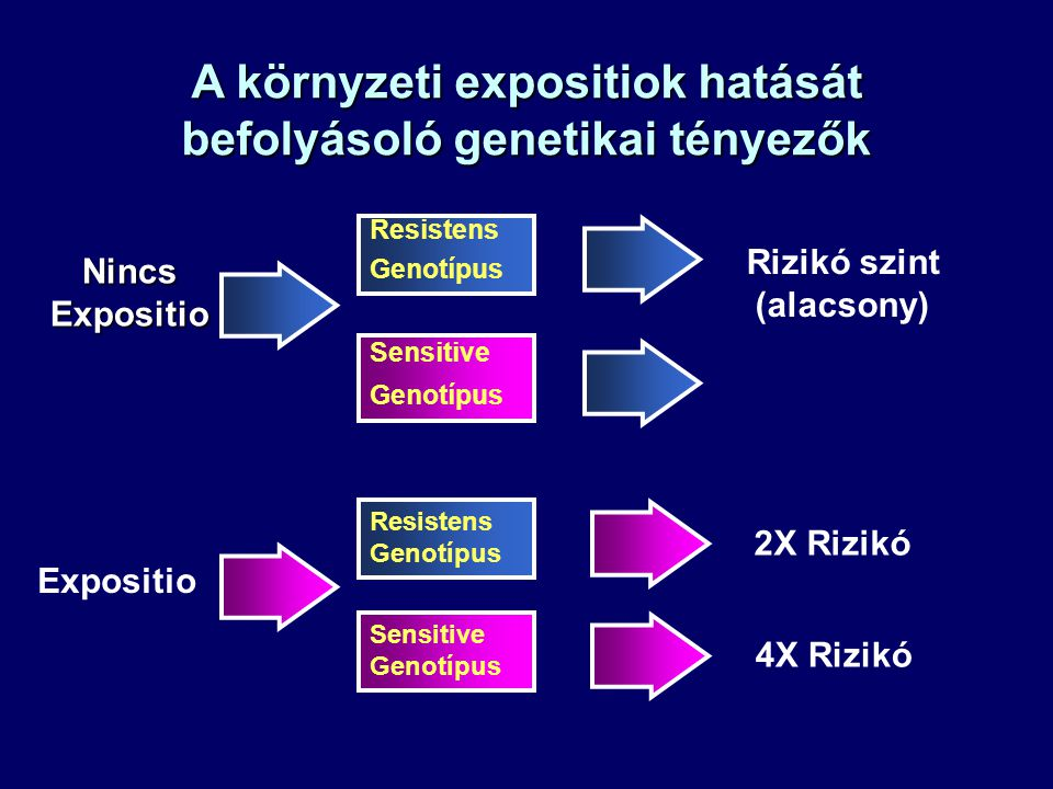 A környzeti expositiok hatását befolyásoló genetikai tényezők