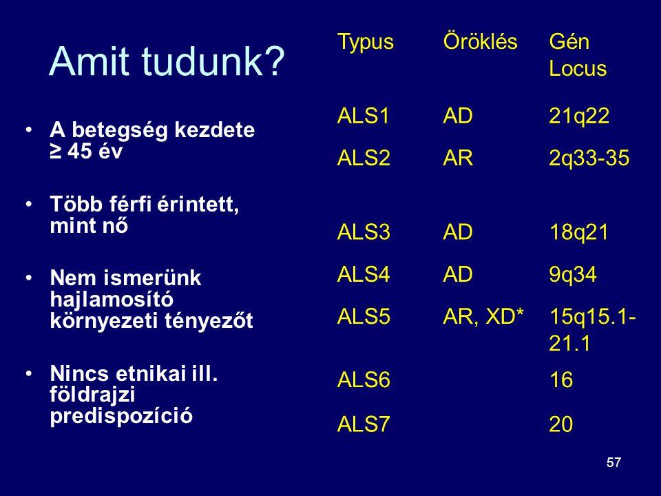 Amit tudunk Typus Öröklés Gén Locus ALS1 AD 21q22 ALS2 AR 2q33-35