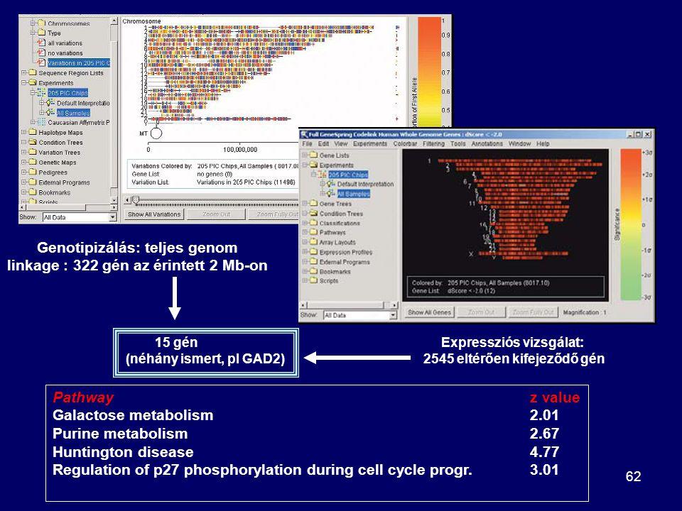 Genotipizálás: teljes genom linkage : 322 gén az érintett 2 Mb-on