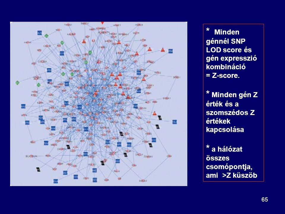 * Minden génnél SNP LOD score és gén expresszió kombináció