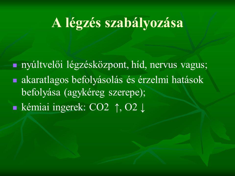 A légzés szabályozása nyúltvelői légzésközpont, híd, nervus vagus;
