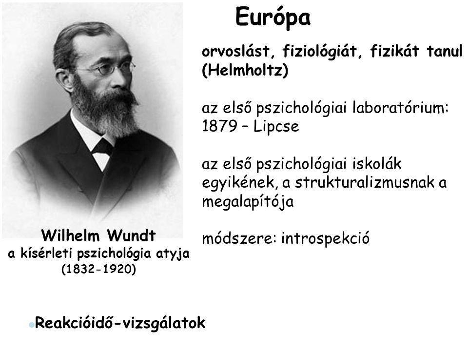 Wilhelm Wundt a kísérleti pszichológia atyja (1832-1920)
