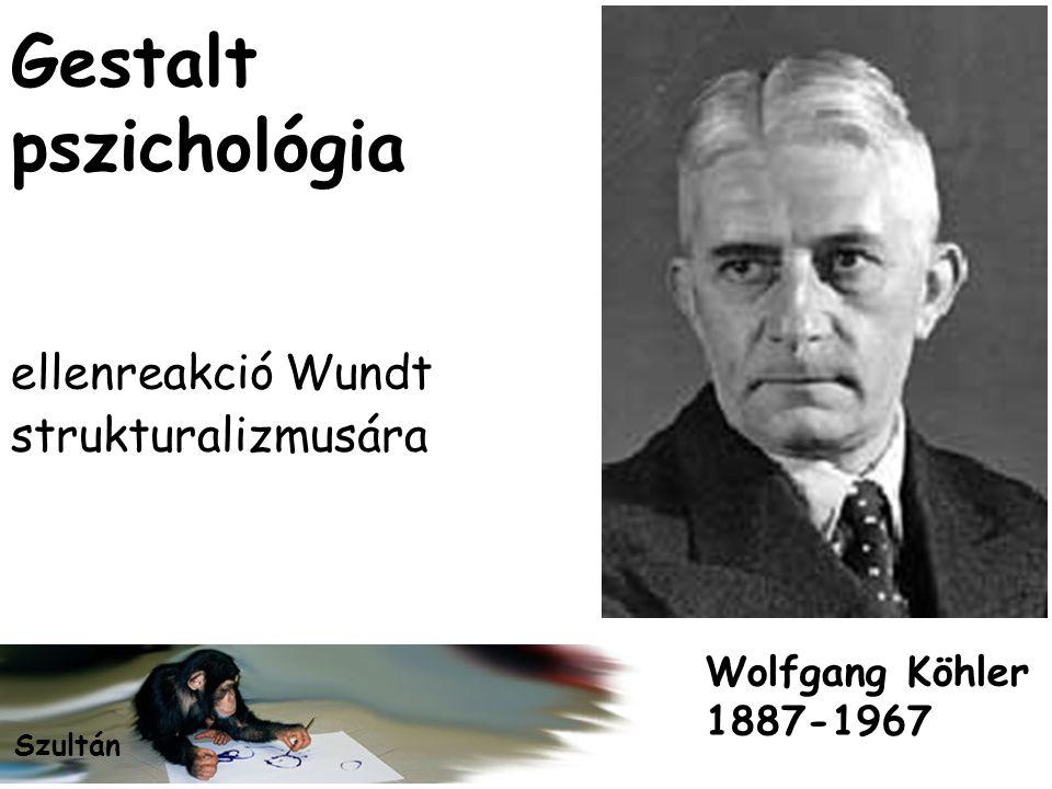 Gestalt pszichológia ellenreakció Wundt strukturalizmusára