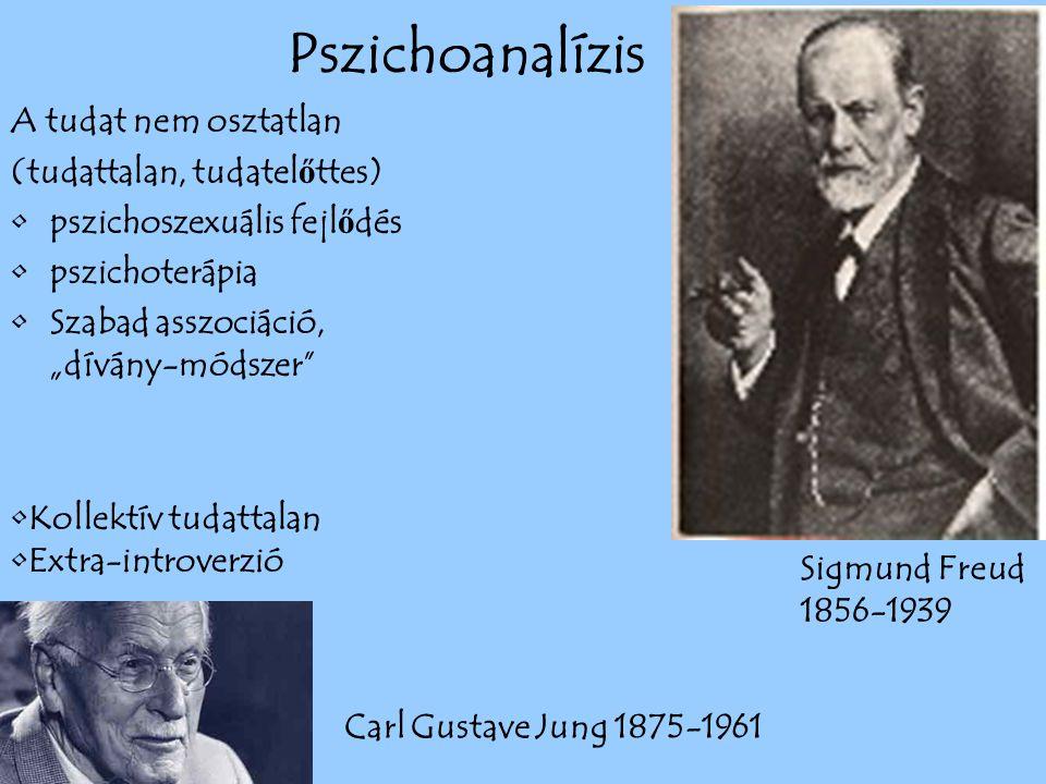 Pszichoanalízis A tudat nem osztatlan (tudattalan, tudatelőttes)