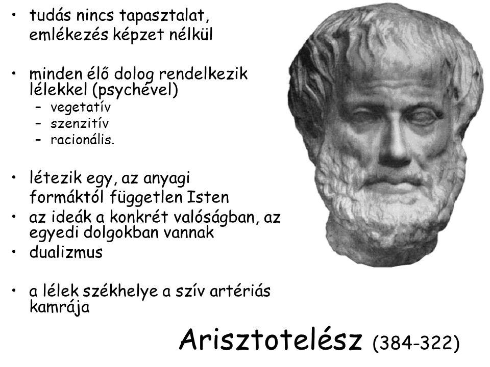 Arisztotelész (384-322) tudás nincs tapasztalat,