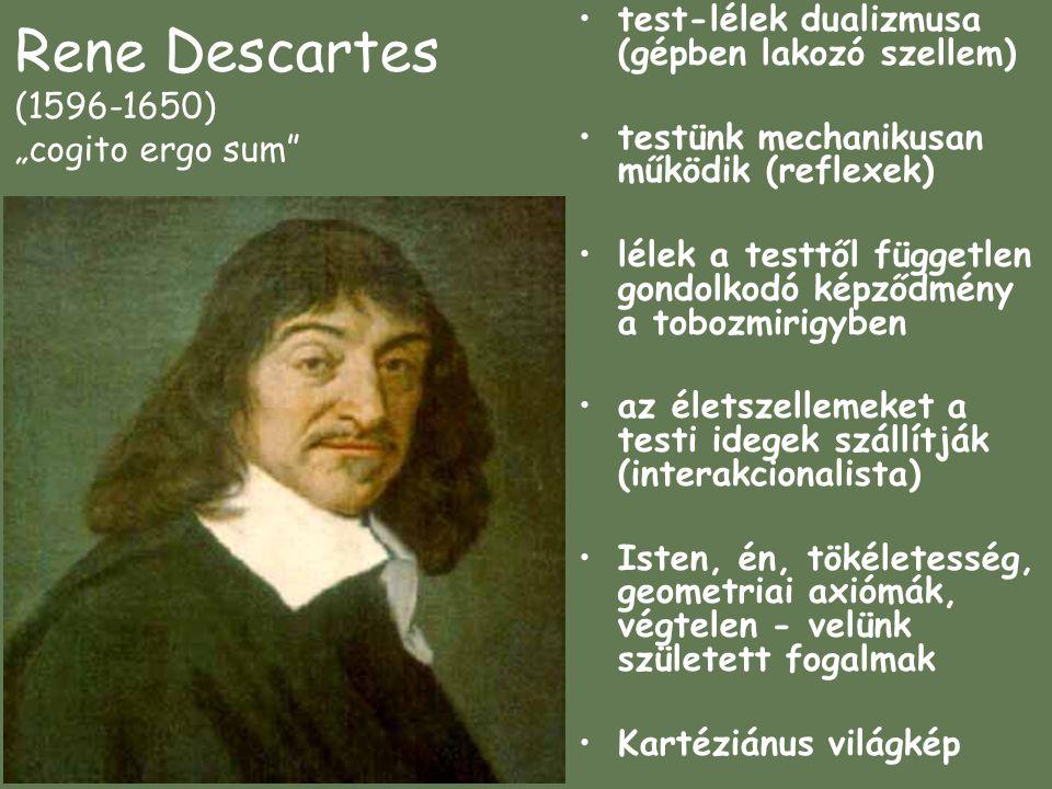 """Rene Descartes (1596-1650) """"cogito ergo sum"""
