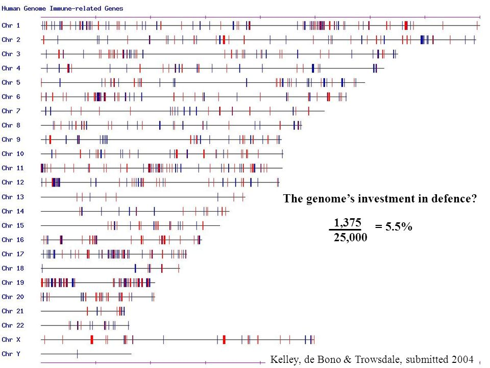 The genome's investment in defence