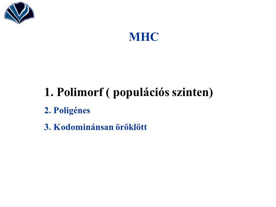 1. Polimorf ( populációs szinten)