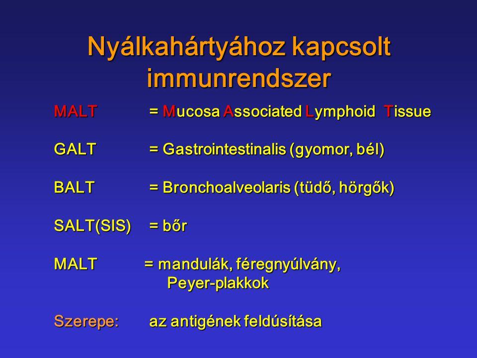 Nyálkahártyához kapcsolt immunrendszer