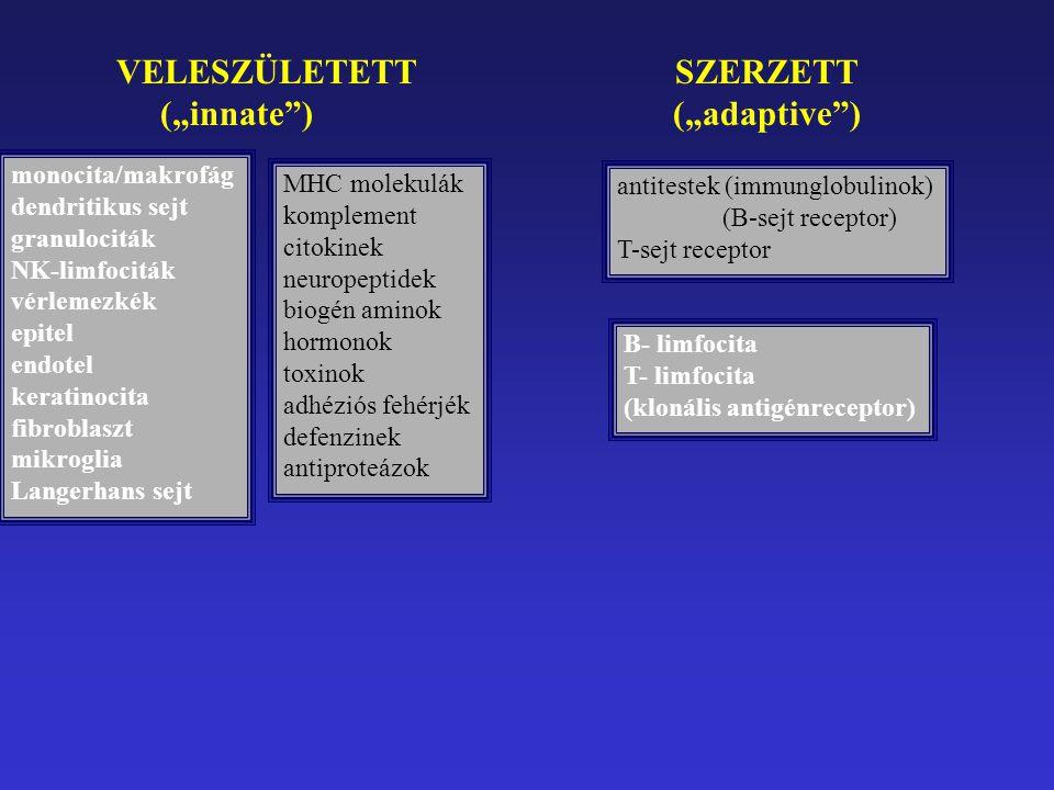 """VELESZÜLETETT SZERZETT (""""innate ) (""""adaptive )"""