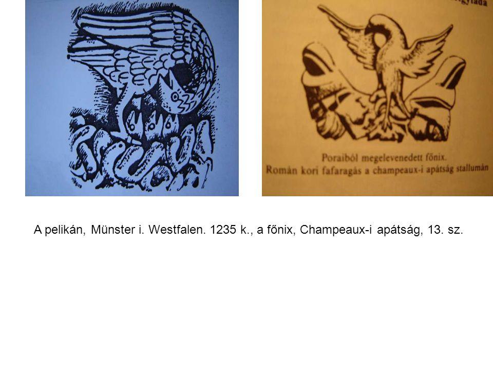 A pelikán, Münster i. Westfalen. 1235 k