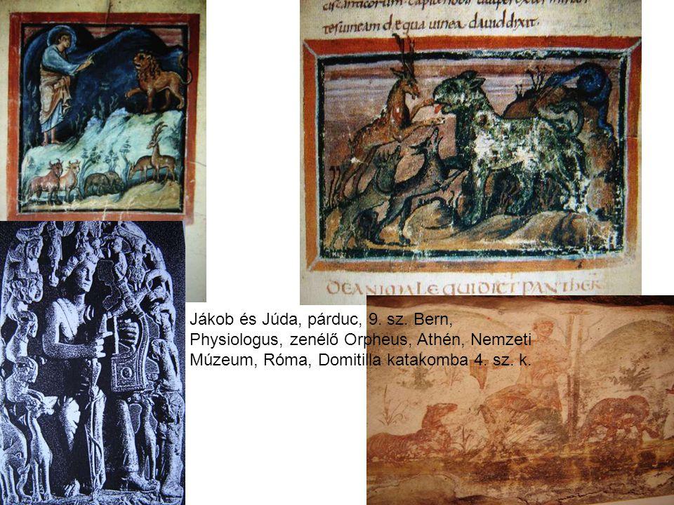 Jákob és Júda, párduc, 9. sz.