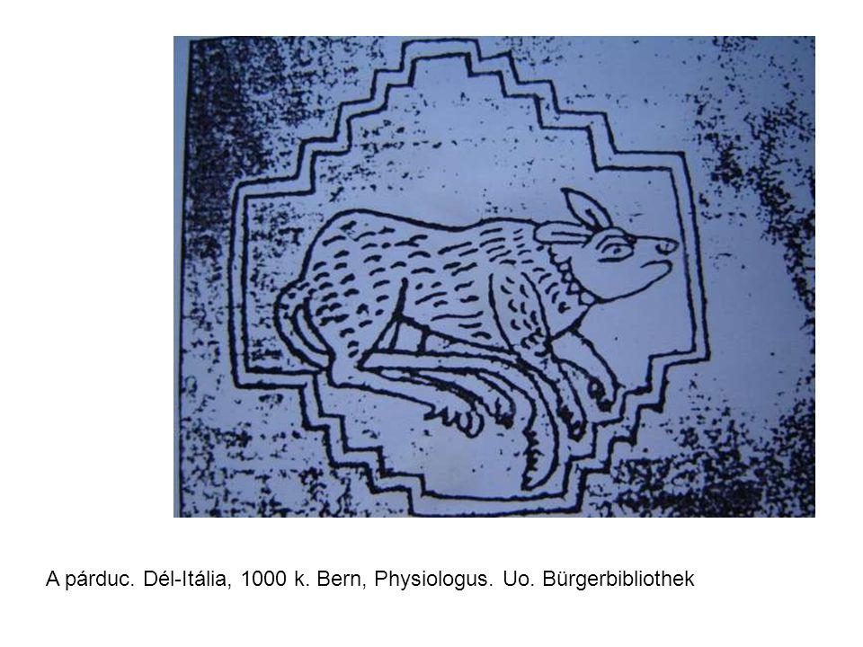 A párduc. Dél-Itália, 1000 k. Bern, Physiologus. Uo. Bürgerbibliothek