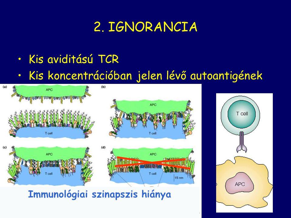 Immunológiai szinapszis hiánya