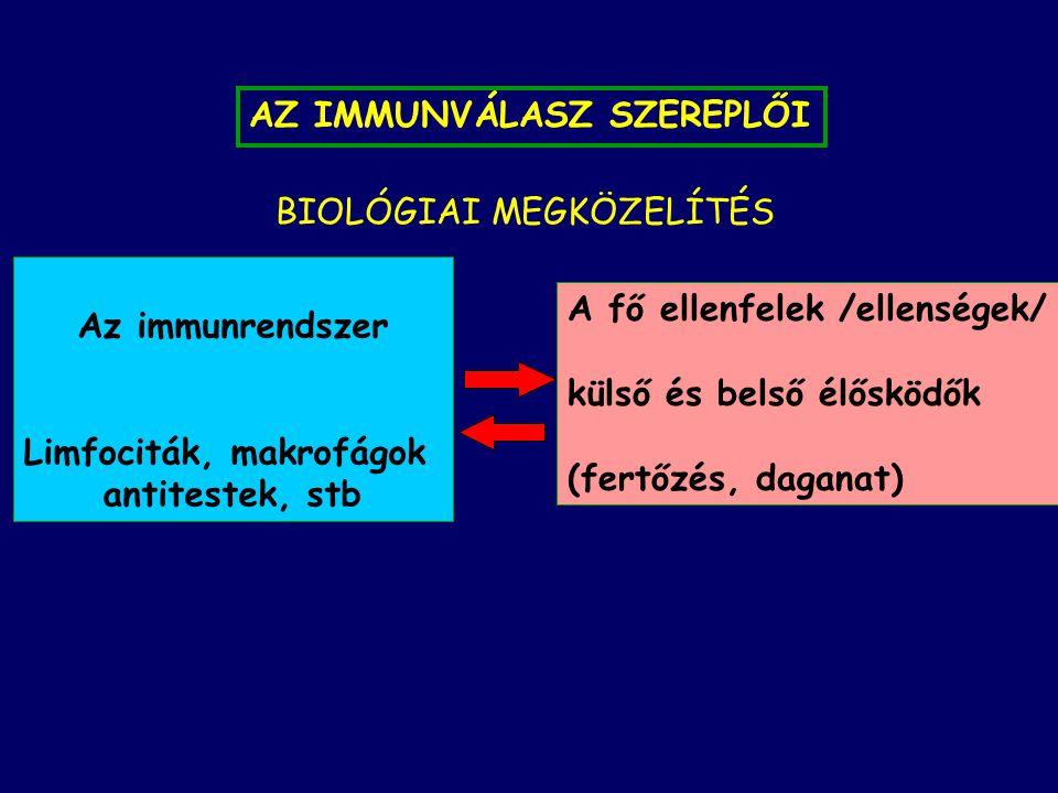 Limfociták, makrofágok