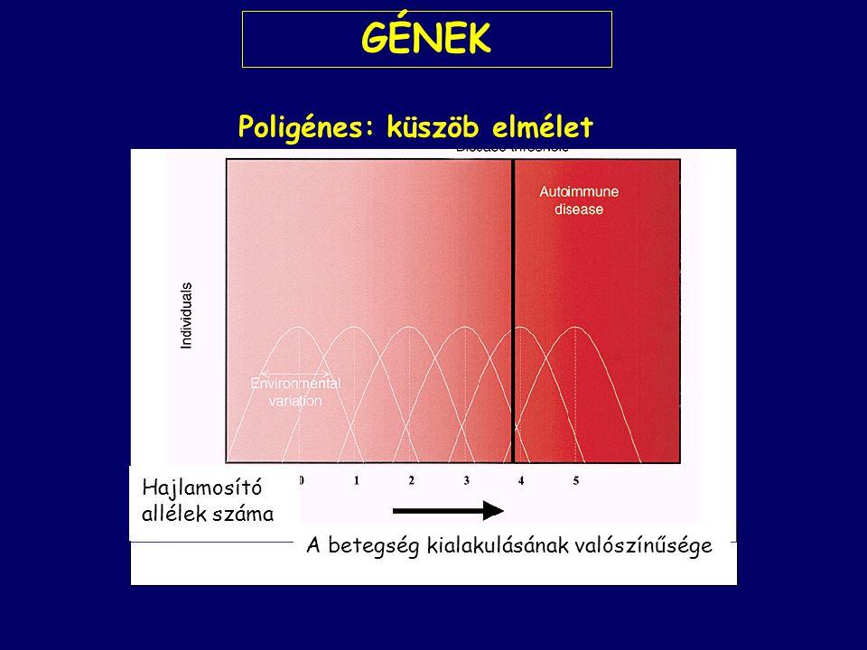 Poligénes: küszöb elmélet