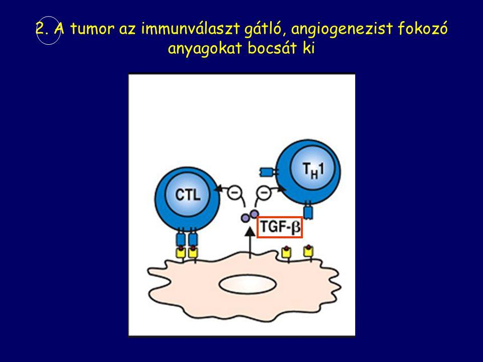 2. A tumor az immunválaszt gátló, angiogenezist fokozó anyagokat bocsát ki