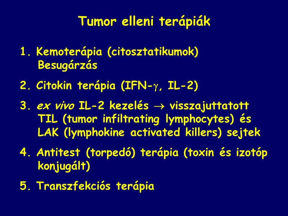 Tumor elleni terápiák 1. Kemoterápia (citosztatikumok) Besugárzás