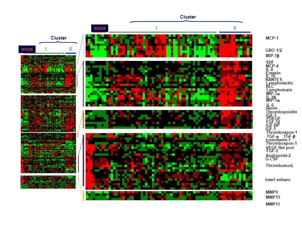 I II I II CK IFN GF MMP Cluster Cluster K F E K F MCP-3 E MCP-1