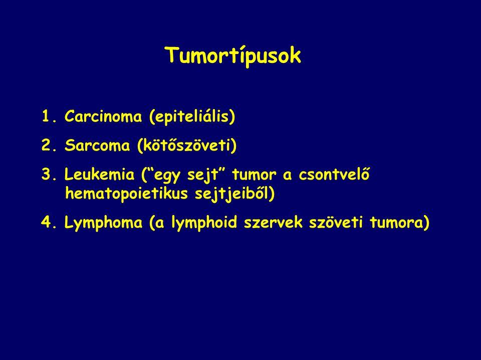 Tumortípusok 1. Carcinoma (epiteliális) 2. Sarcoma (kötőszöveti)
