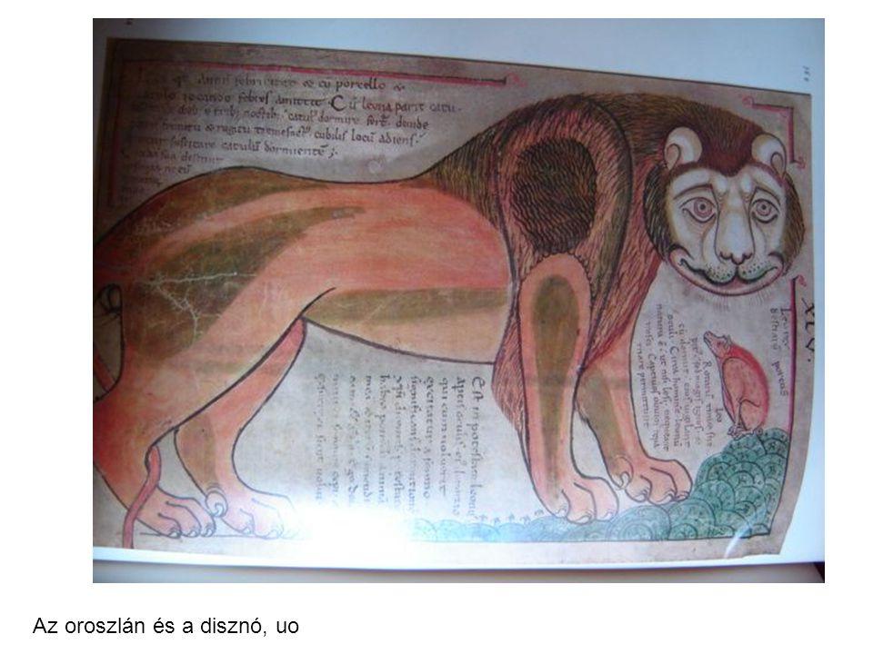 Az oroszlán és a disznó, uo