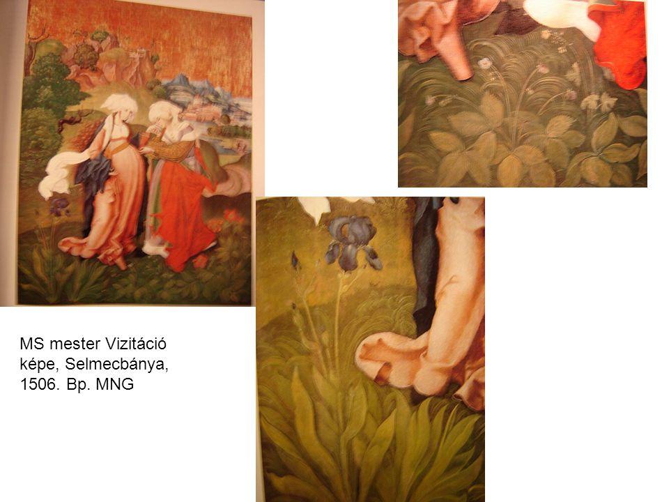 MS mester Vizitáció képe, Selmecbánya, 1506. Bp. MNG