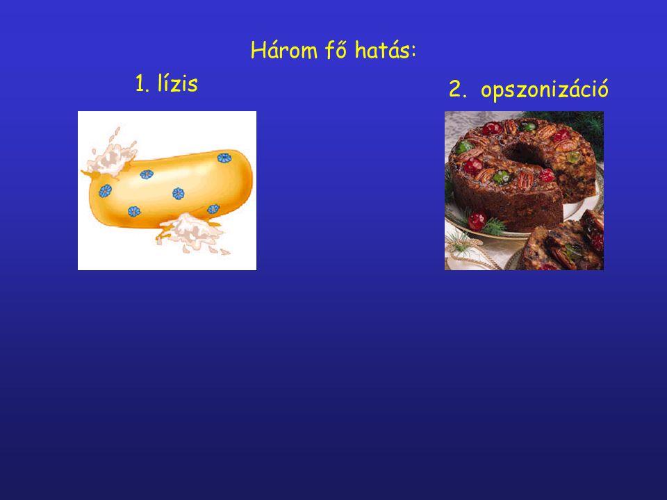 Három fő hatás: 1. lízis 2. opszonizáció