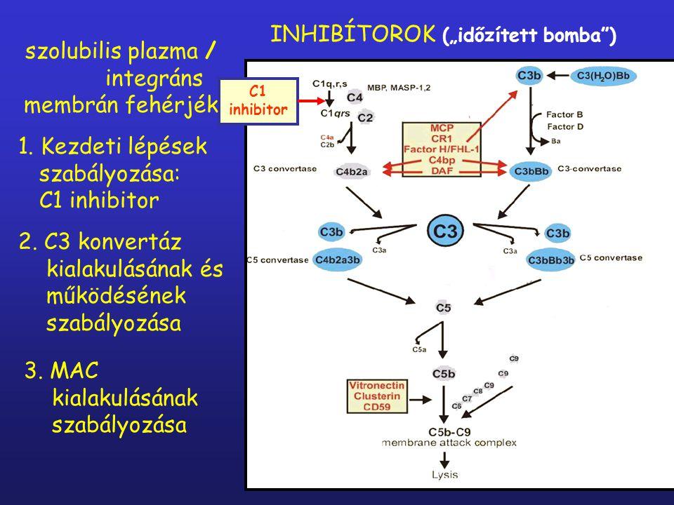 """INHIBÍTOROK (""""időzített bomba )"""