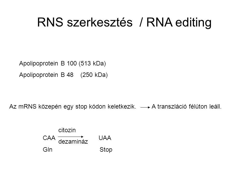 RNS szerkesztés / RNA editing