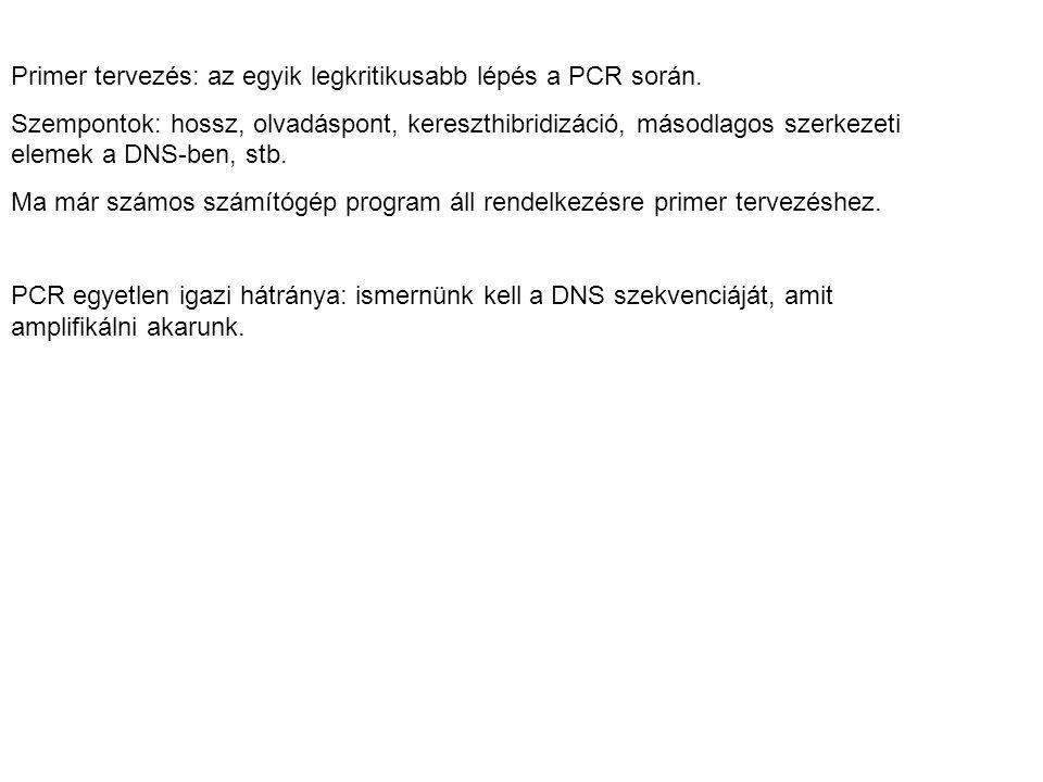 Primer tervezés: az egyik legkritikusabb lépés a PCR során.