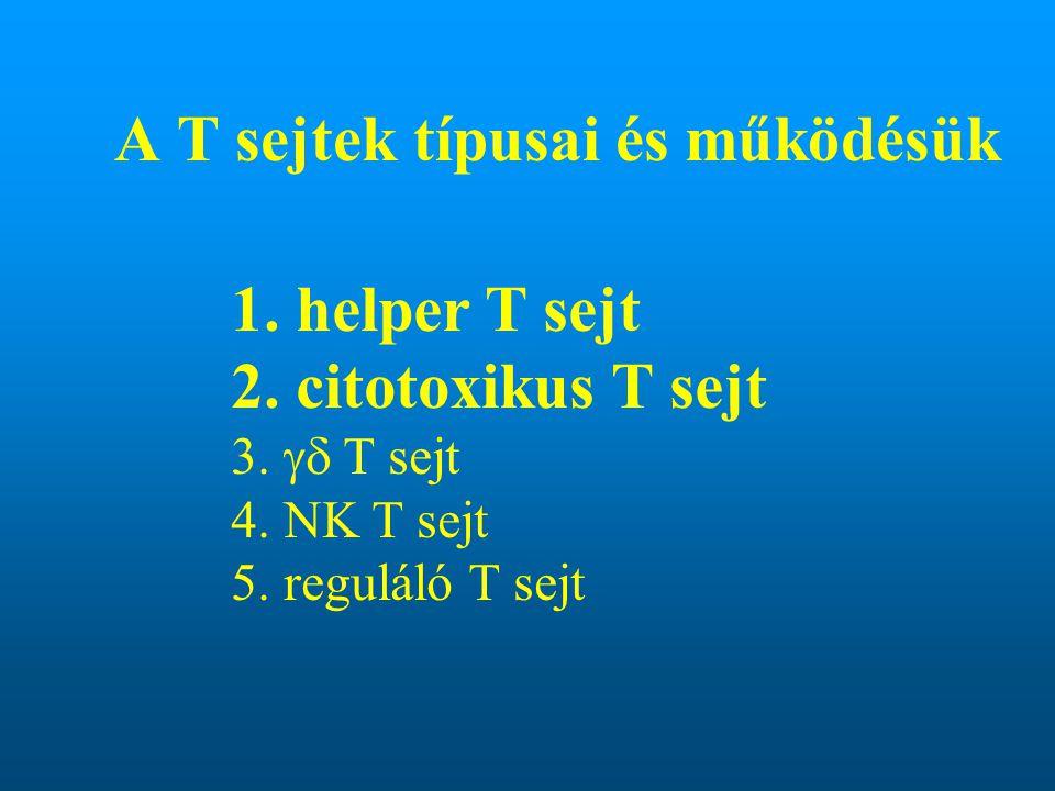 A T sejtek típusai és működésük