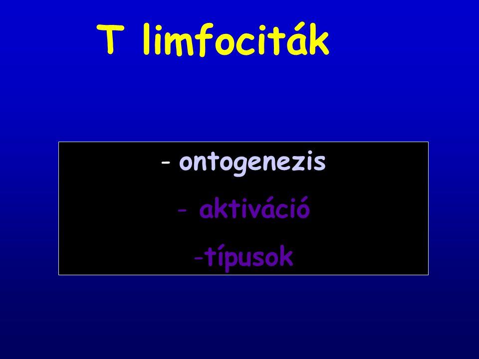 T limfociták - ontogenezis - aktiváció típusok