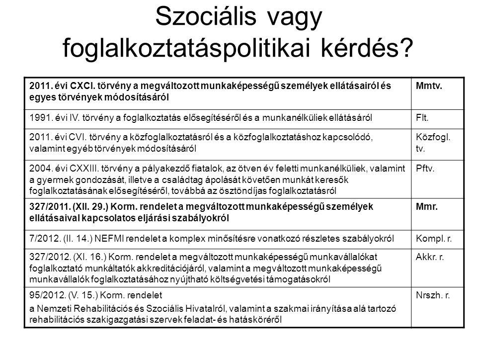 Szociális vagy foglalkoztatáspolitikai kérdés