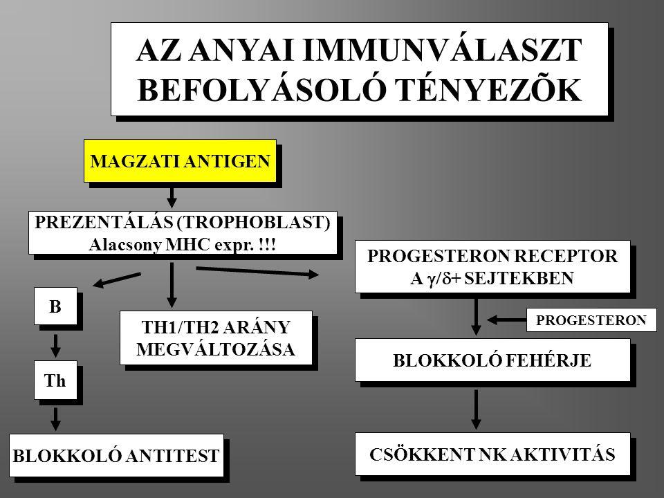 PREZENTÁLÁS (TROPHOBLAST)