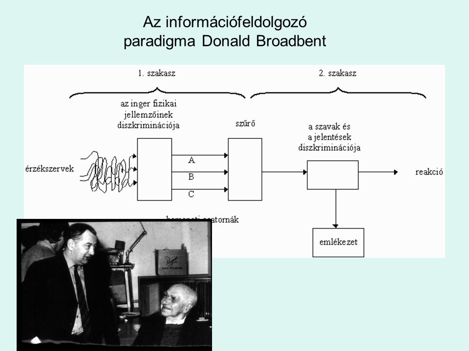 Az információfeldolgozó paradigma Donald Broadbent