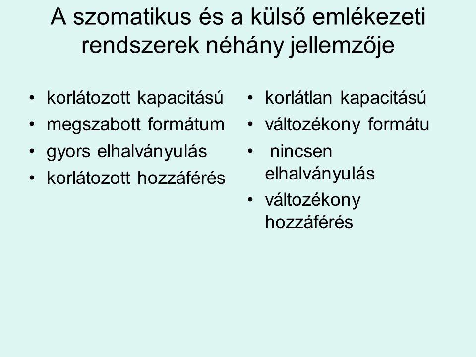 A szomatikus és a külső emlékezeti rendszerek néhány jellemzője