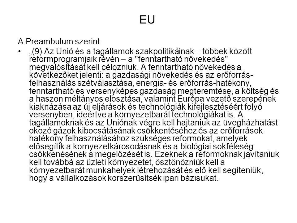 EU A Preambulum szerint