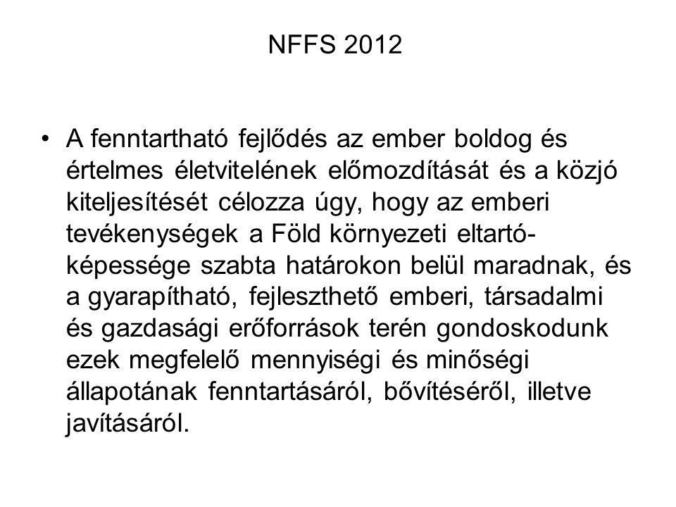 NFFS 2012