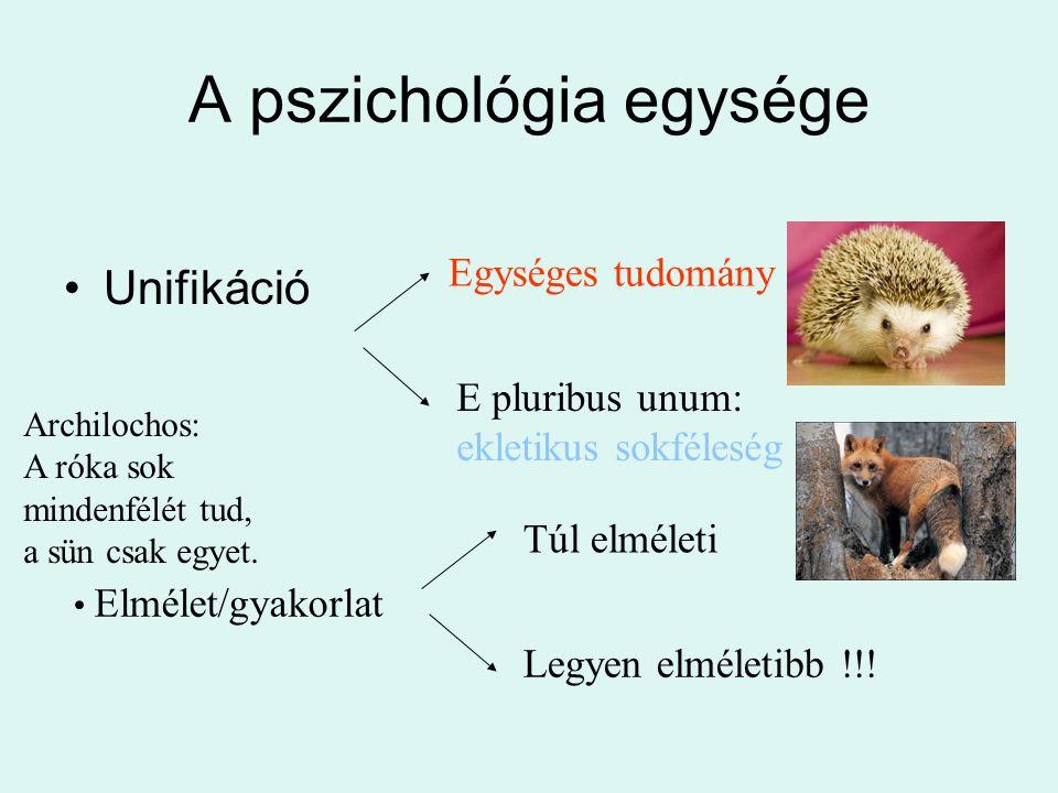 A pszichológia egysége