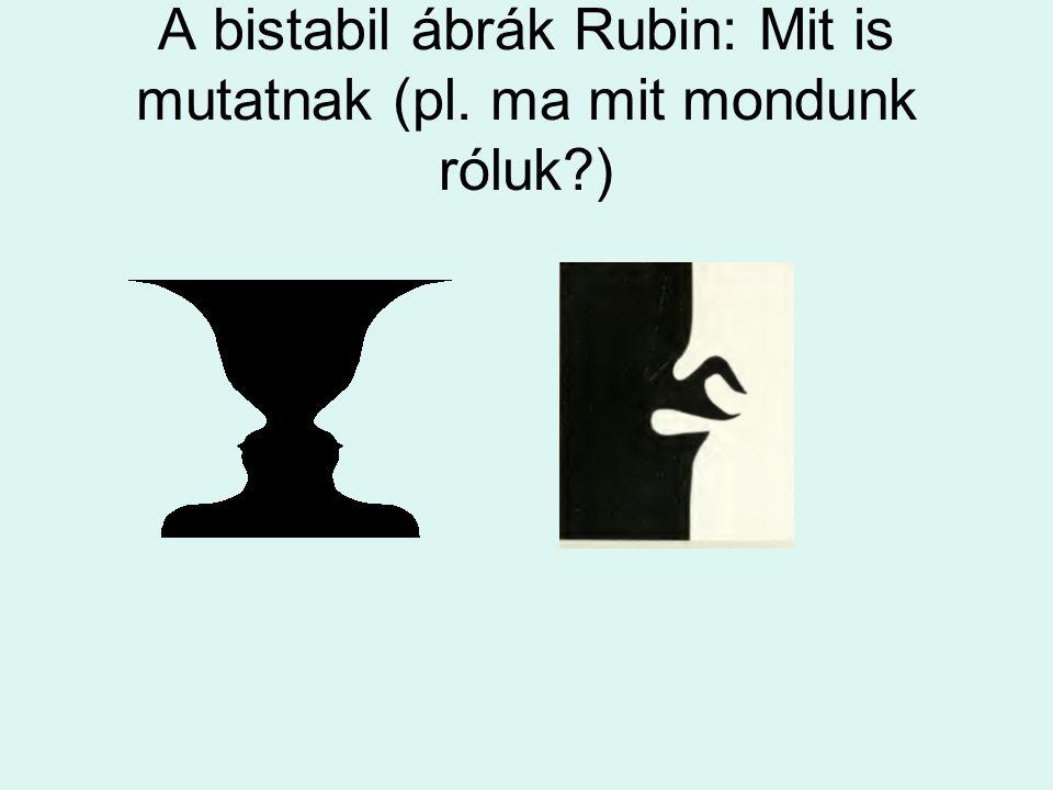 A bistabil ábrák Rubin: Mit is mutatnak (pl. ma mit mondunk róluk )